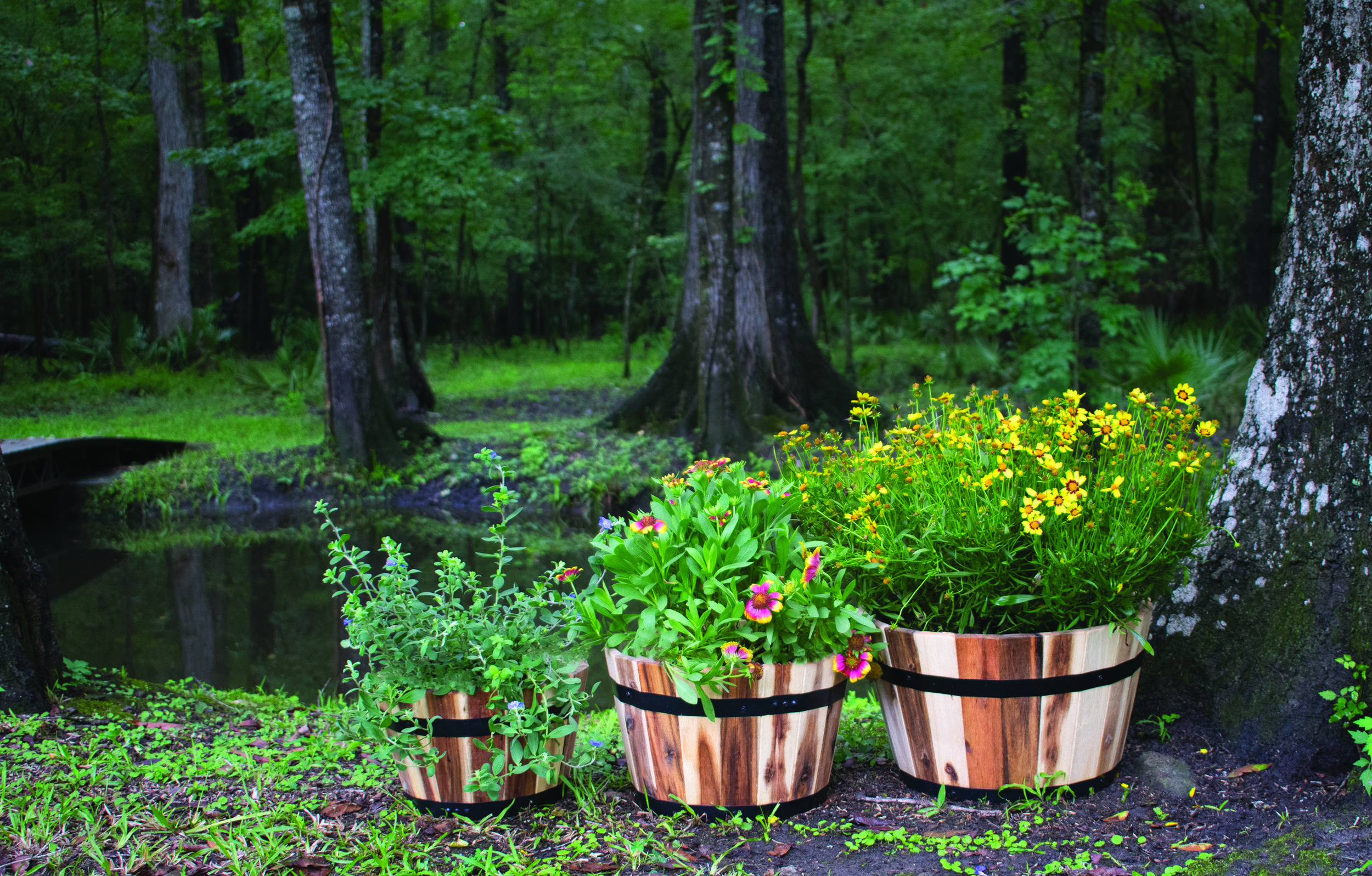 "set of six acacia planters  dimensions: 21""x12.5"""