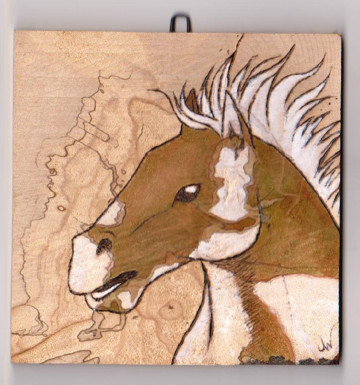 """""""Wild Mustang II"""""""