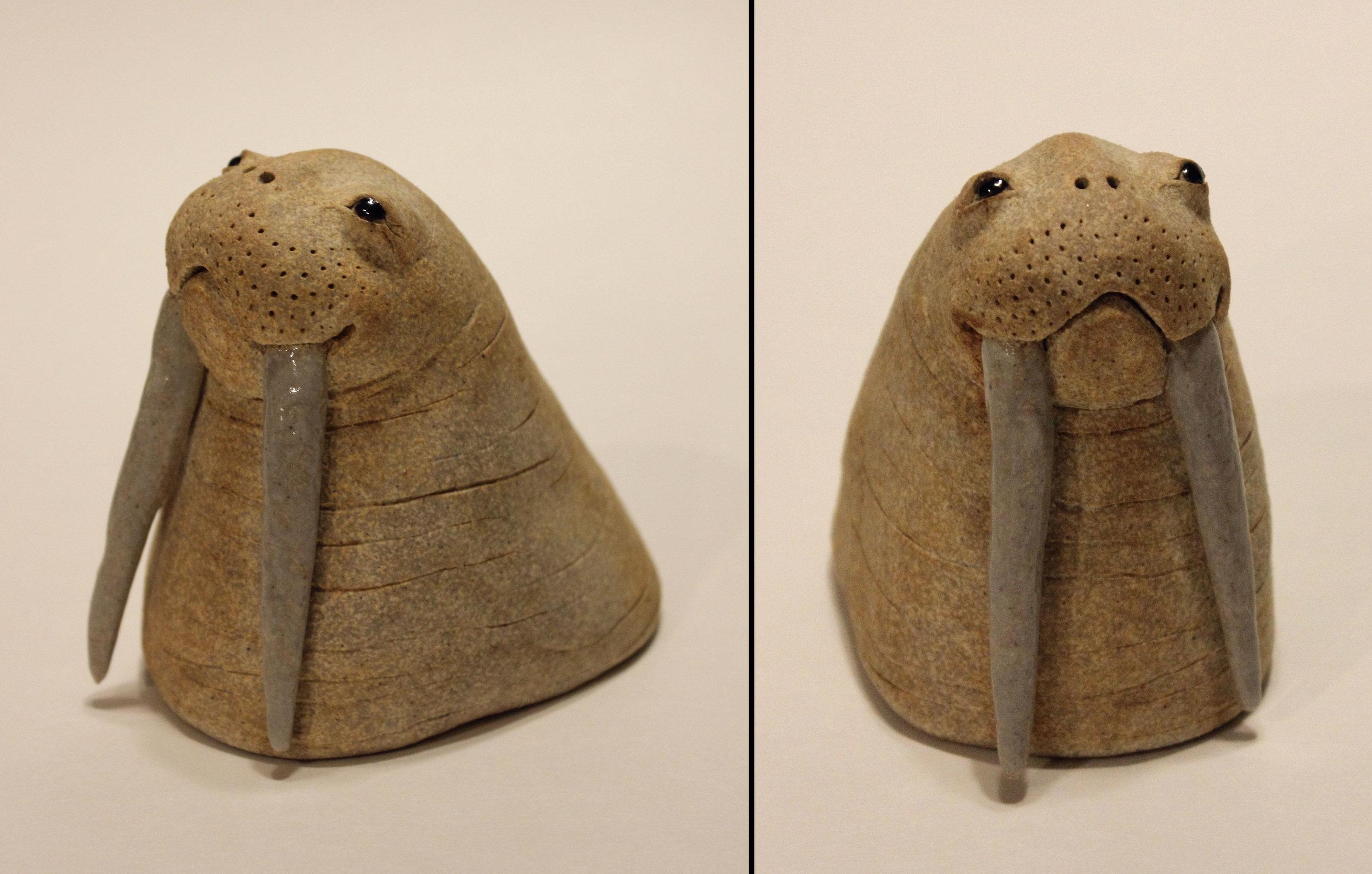 """""""Walrus"""""""