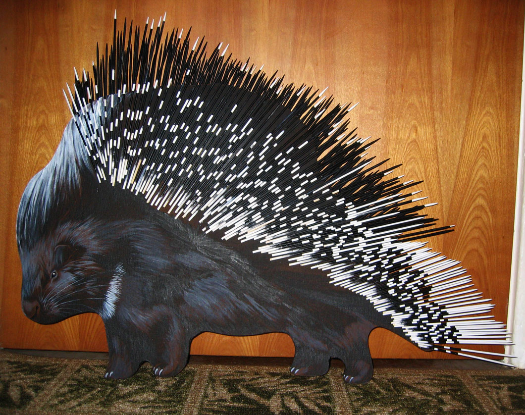 """Porcupine"""