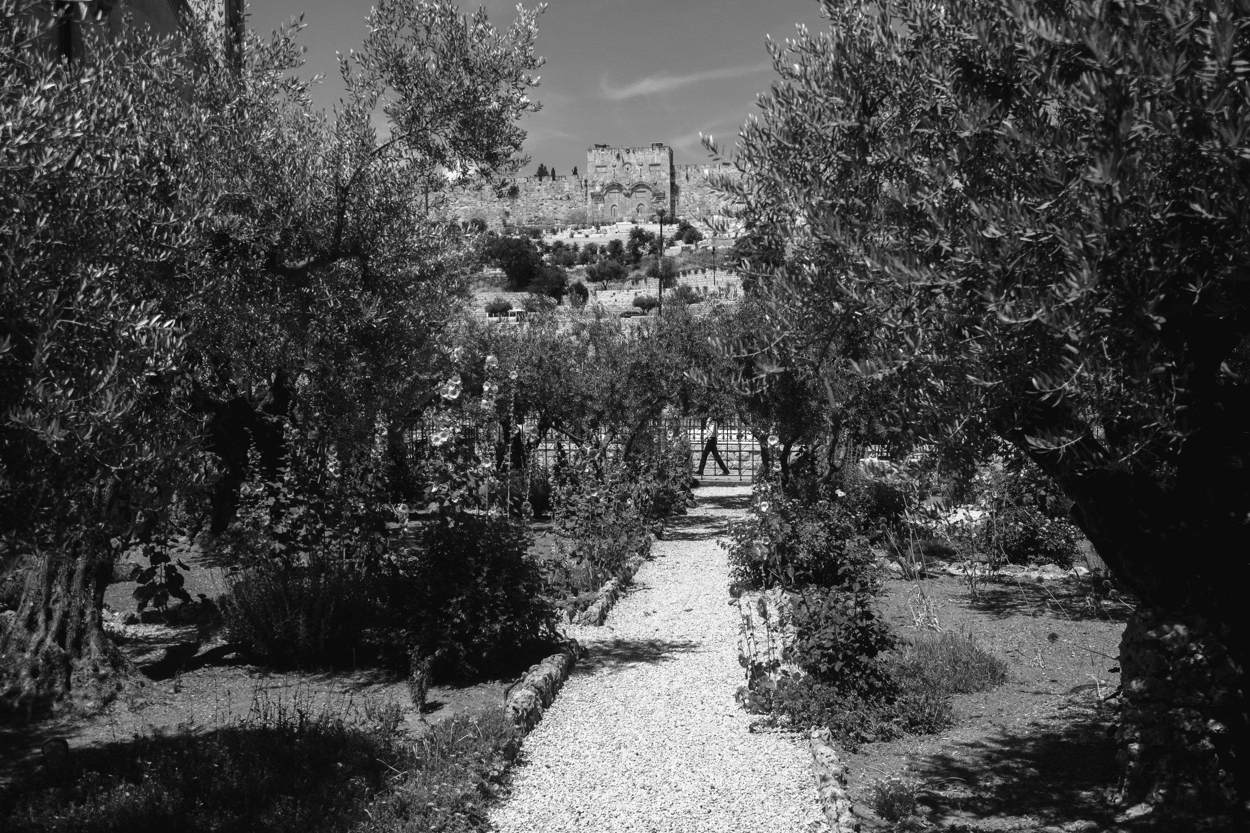 GethsemaneGoldenGate.jpg