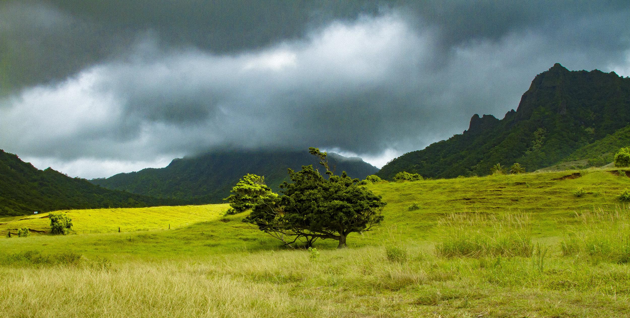 Hawaii_day2_062.jpg