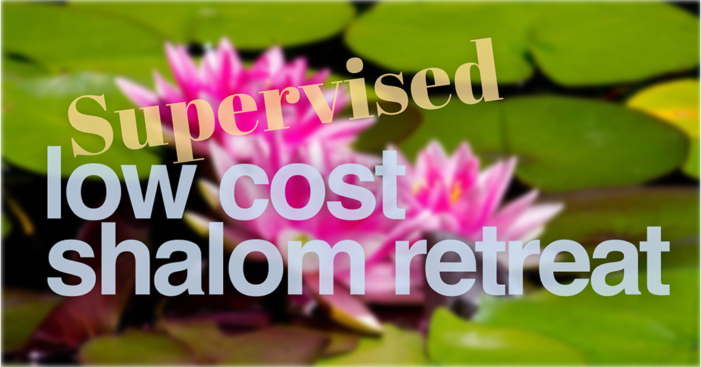Supervised Low Cost Retreat 01 copy.jpg