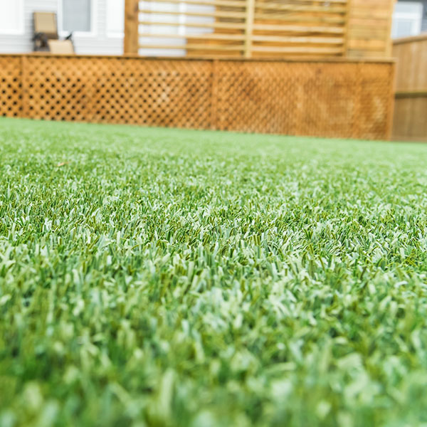 A freshly-cut lawn featuring a wooden enclosure in the Calgary and Banff area
