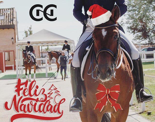 Feliz navidad! . . #feliznavidad #christmas #horses #caballo #hipica #equestrian