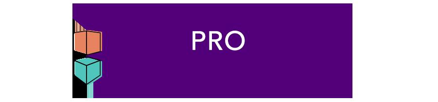 pro-header-2.png