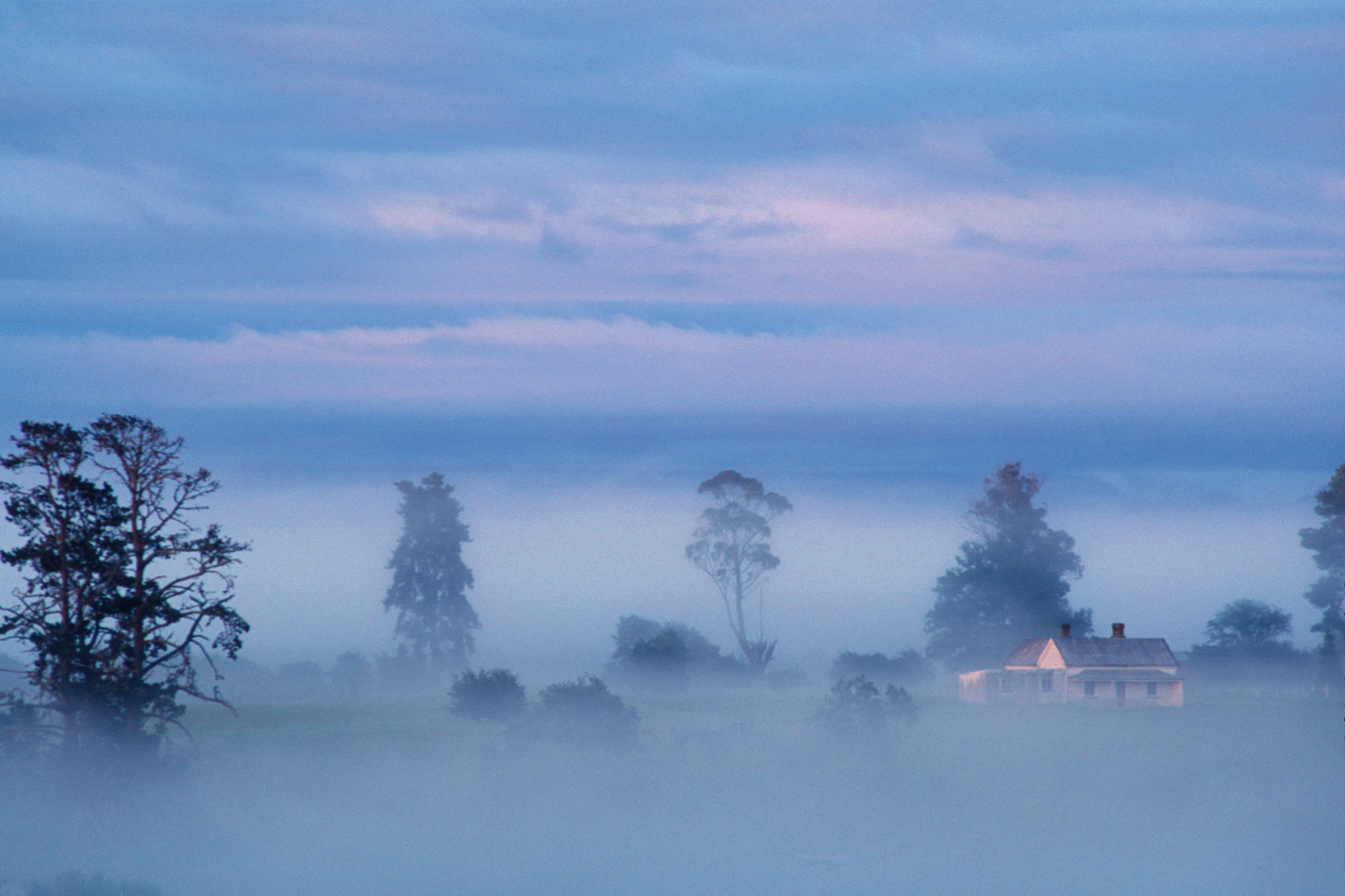 Heavy fog will soon burn away with the rising of the sun over the sheep pastures of Launceston and Cambelltown.  Campbelltown