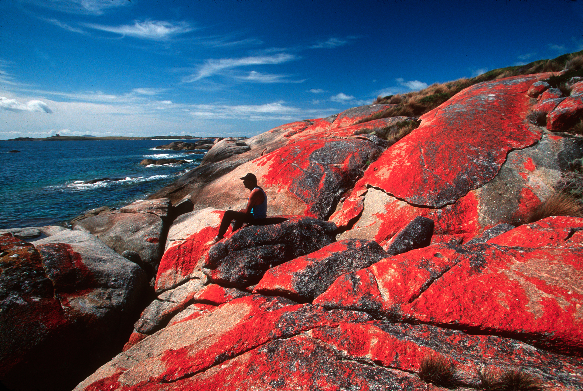 An aborigine inhabitant of 'The Corner' relaxes on a coastal rock covered by blooming lichen.  Cape Barren Island