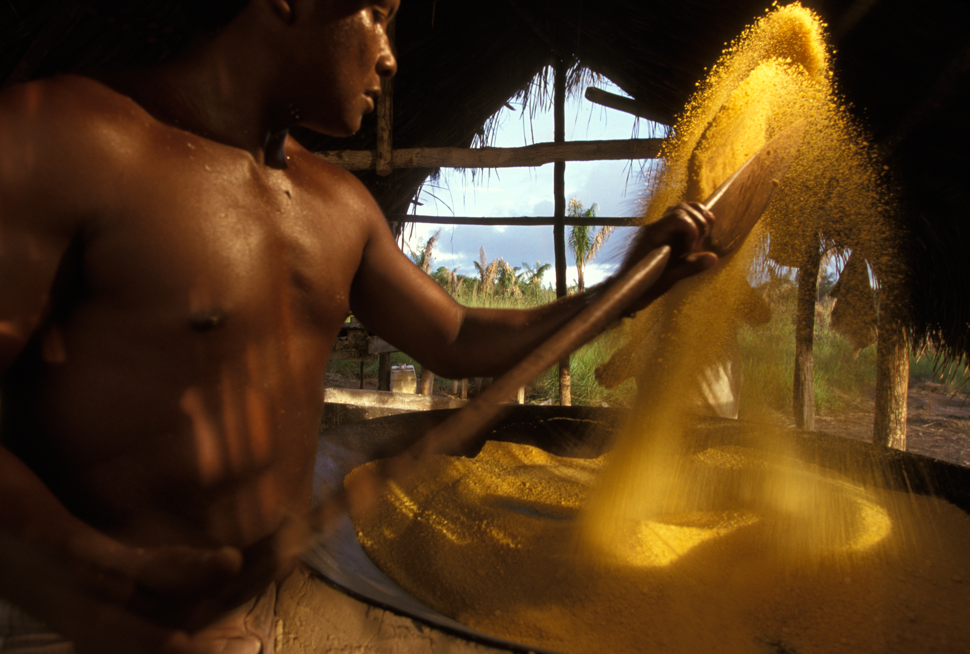 Using a wooden spatula, a Waiapixana worker dries the locally-grown cassava grain (maniok) over a large, heated pan. The cassava will later be sold at a nearby market.  Moskow, Brazil