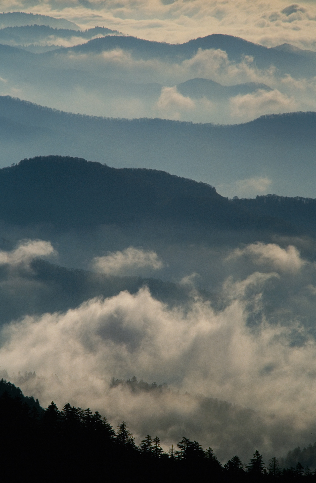 The classic smoky-blue mist view of the eastern ridges from Clingman's Dome, the highest point on the Appalachian Trail.  Clingman's Dome, Tennessee