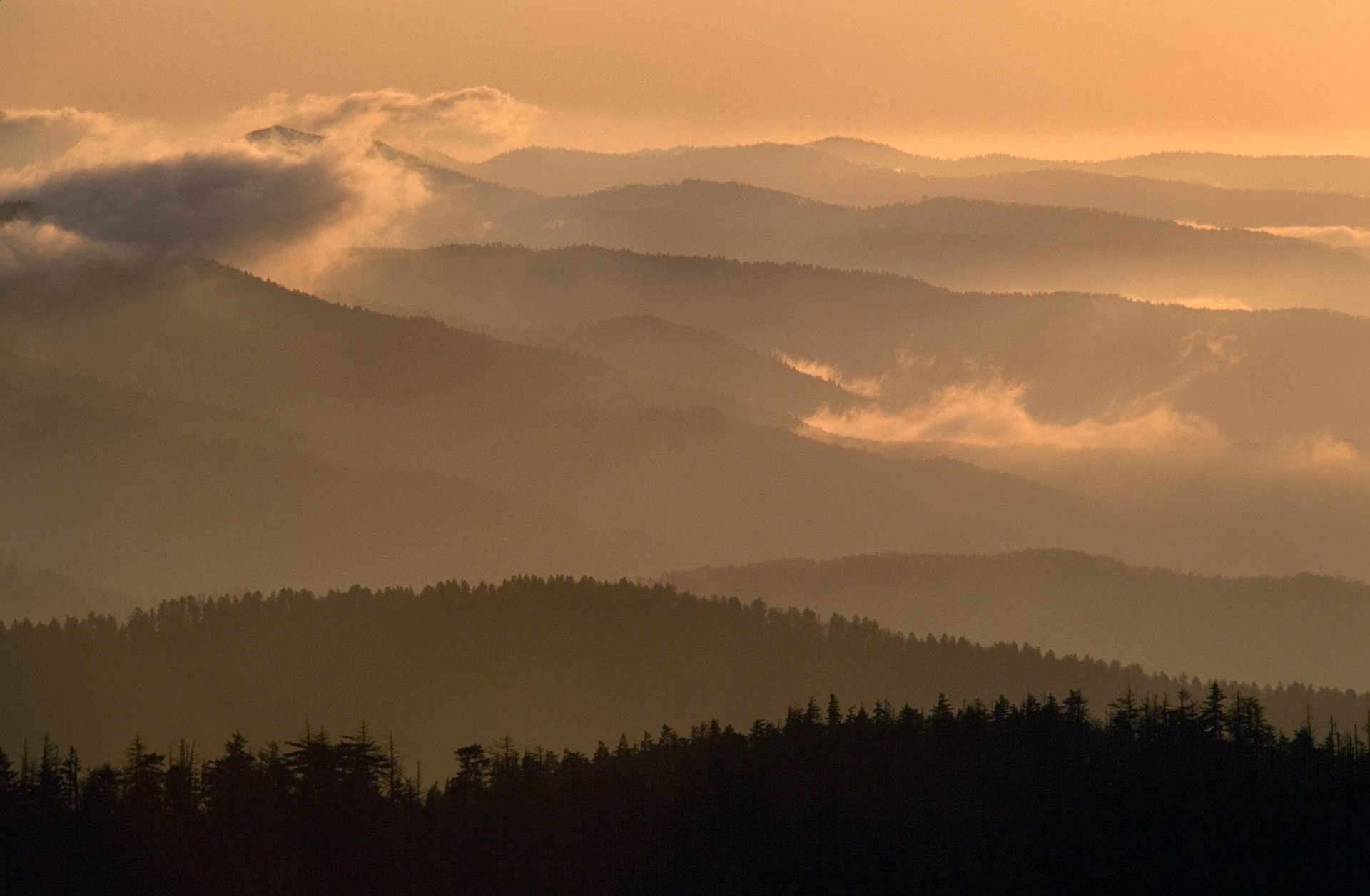 At an elevation of 6643 feet, the highest point along the Appalachian Trail, Clingman's Dome provides spectacular scenic vistas.  Clingman's Dome, Tennessee