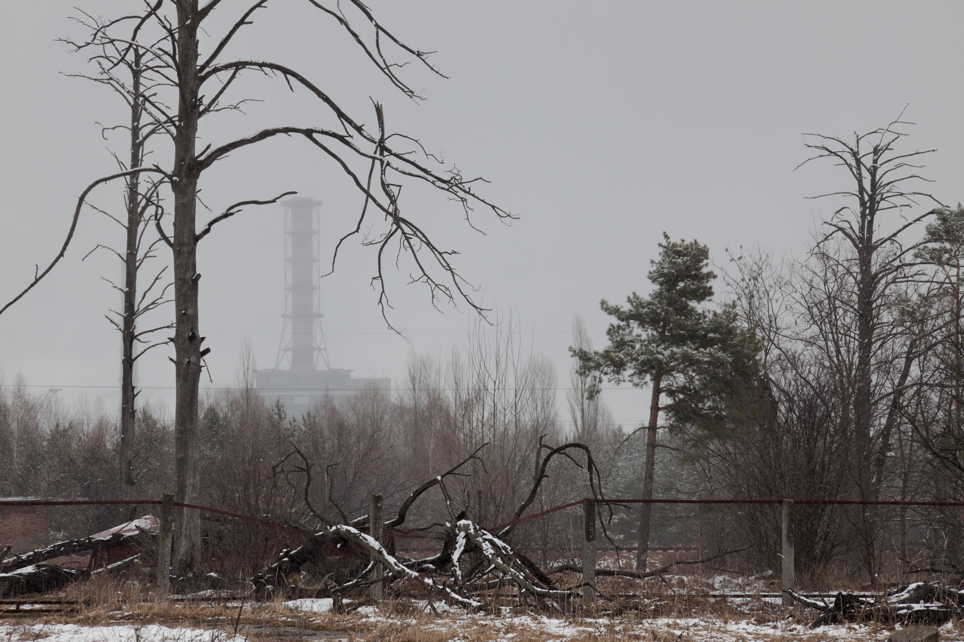 A view of the sarcophagus with remnants of the 10 square kilometer Red Forest surrounding the Chernobyl Nuclear Power Plant.  Chernobyl Nuclear Power Plant, Ukraine