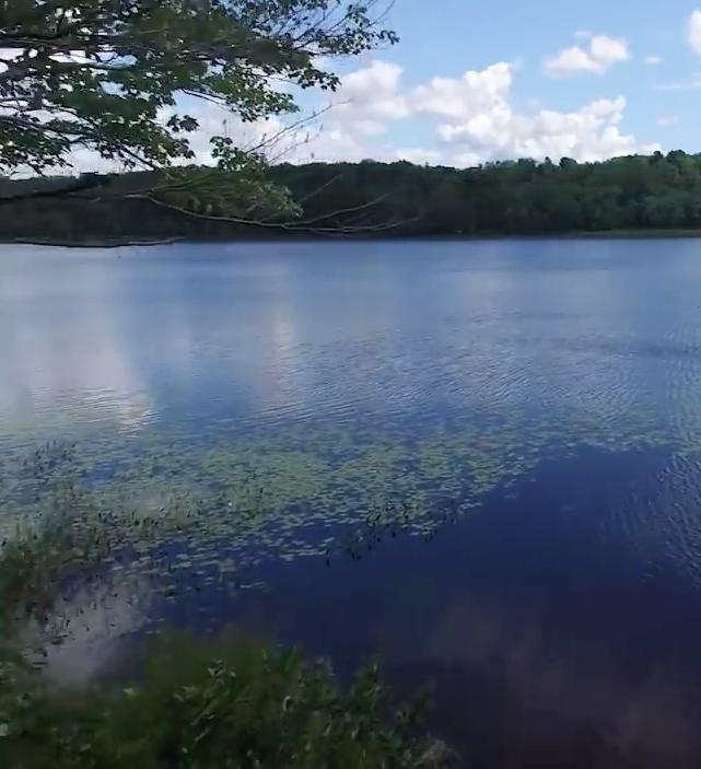 On Shaker Pond -