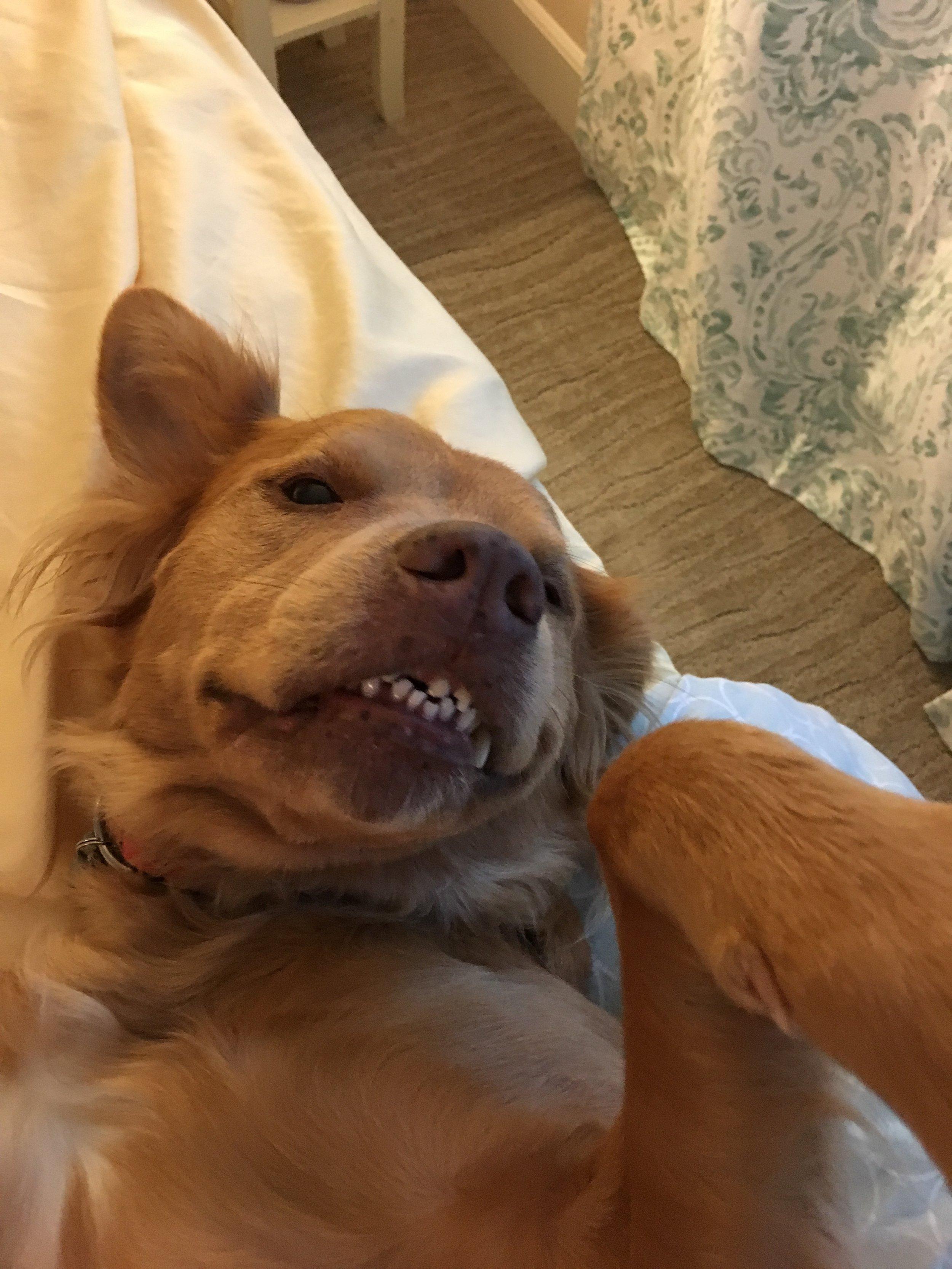 Chloe Smiling.JPG