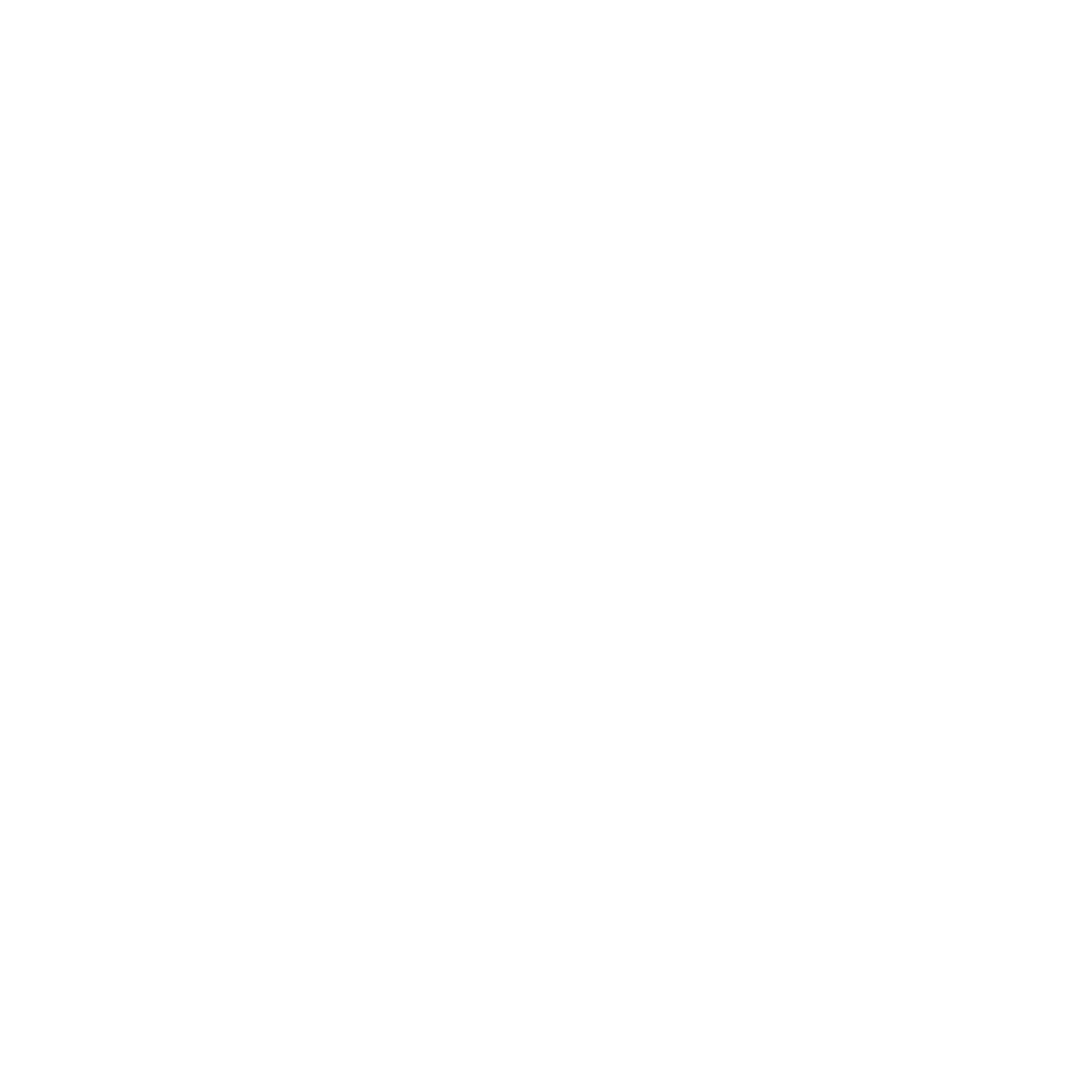 HSM White.png