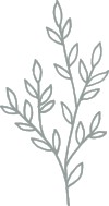 Sarah - Branches Leaves.png