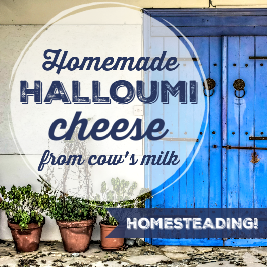 MAKE YOUR OWN HALLOUMI