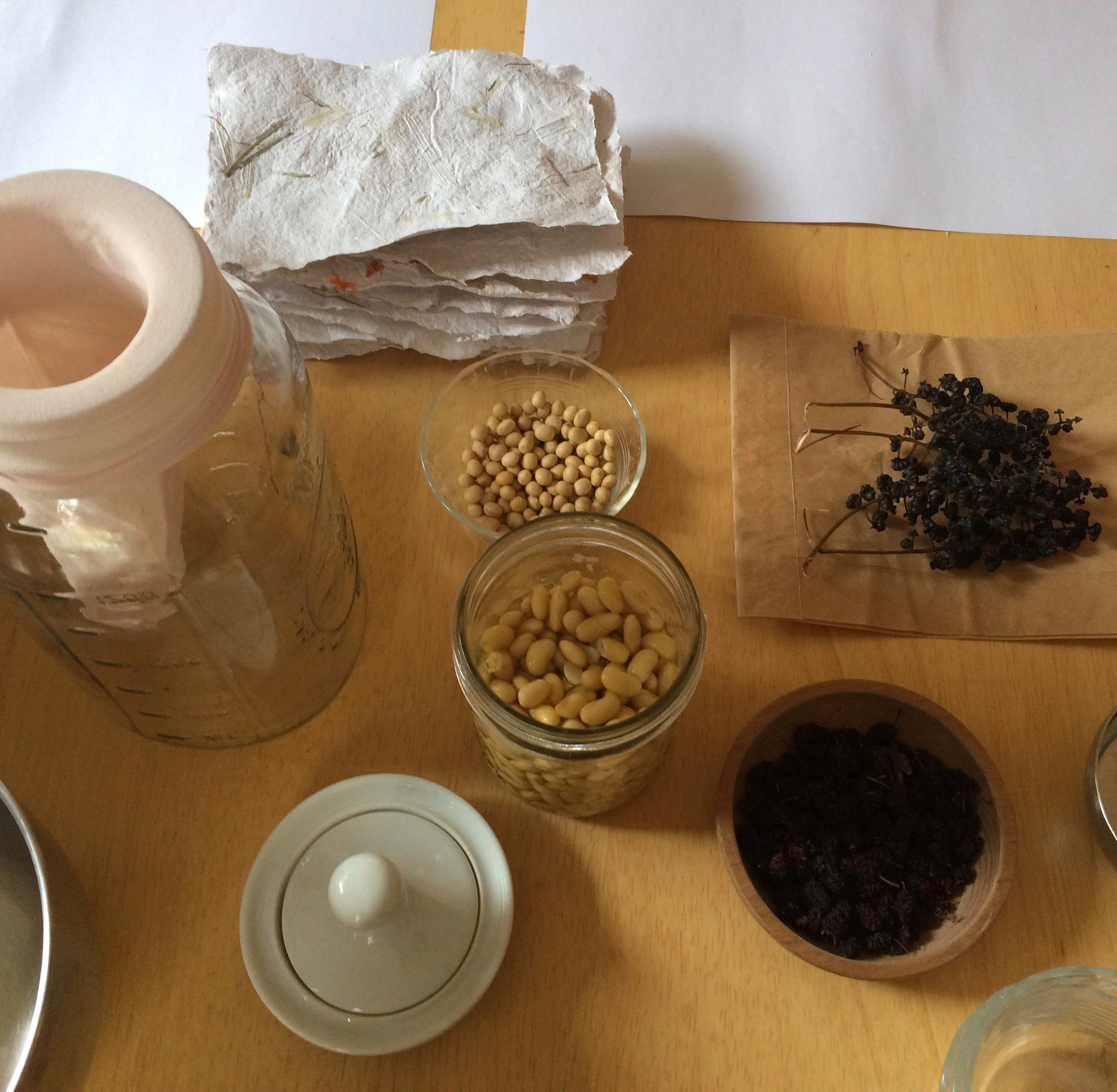 Making soy milk paint from beans and berries to use on homemade paper