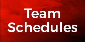 4028-red_small-button-team-schedules.png