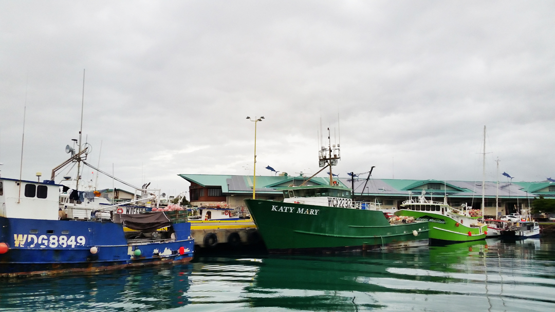 Fishing fleet at Pier 36.