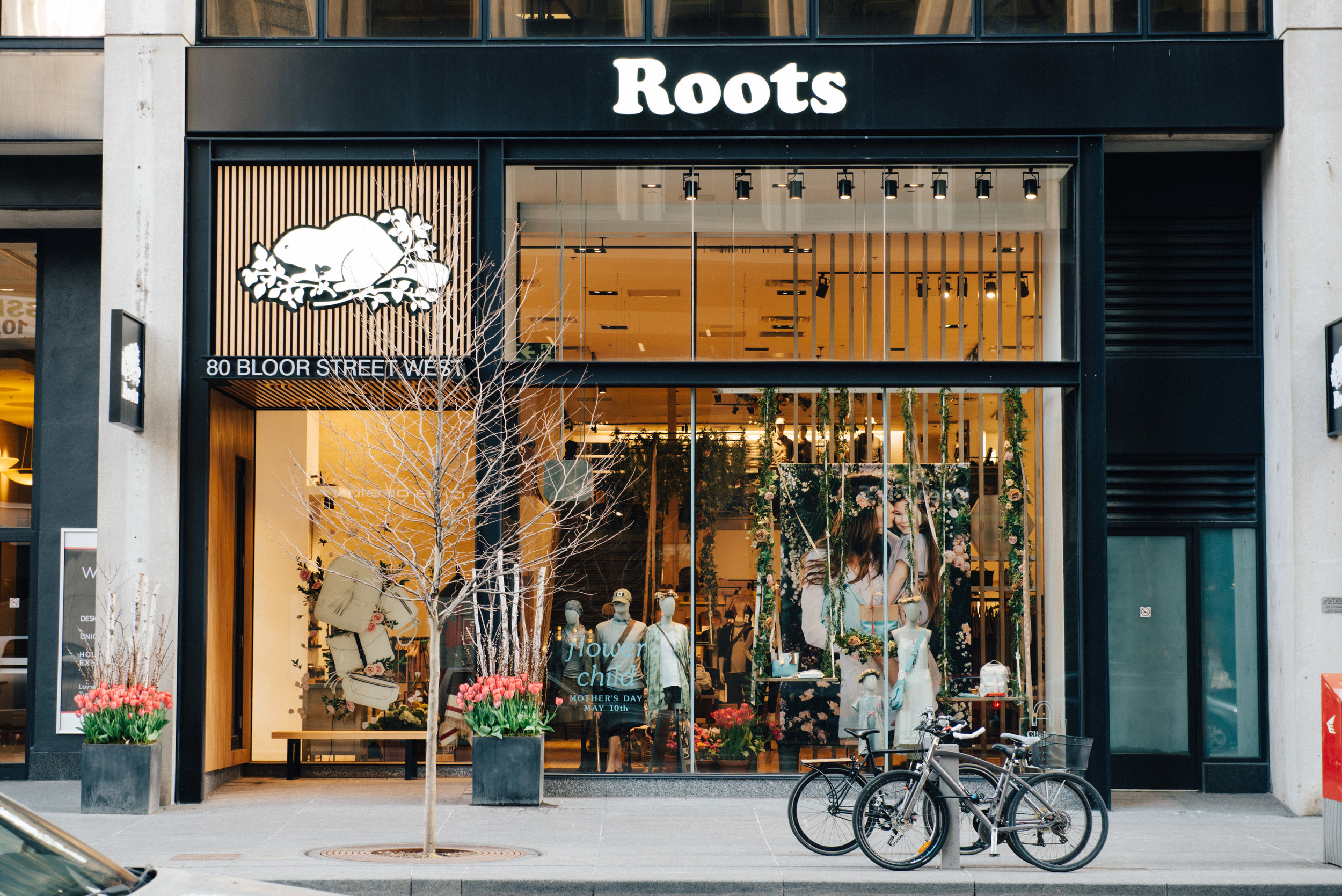 BloorSt_Roots.jpg