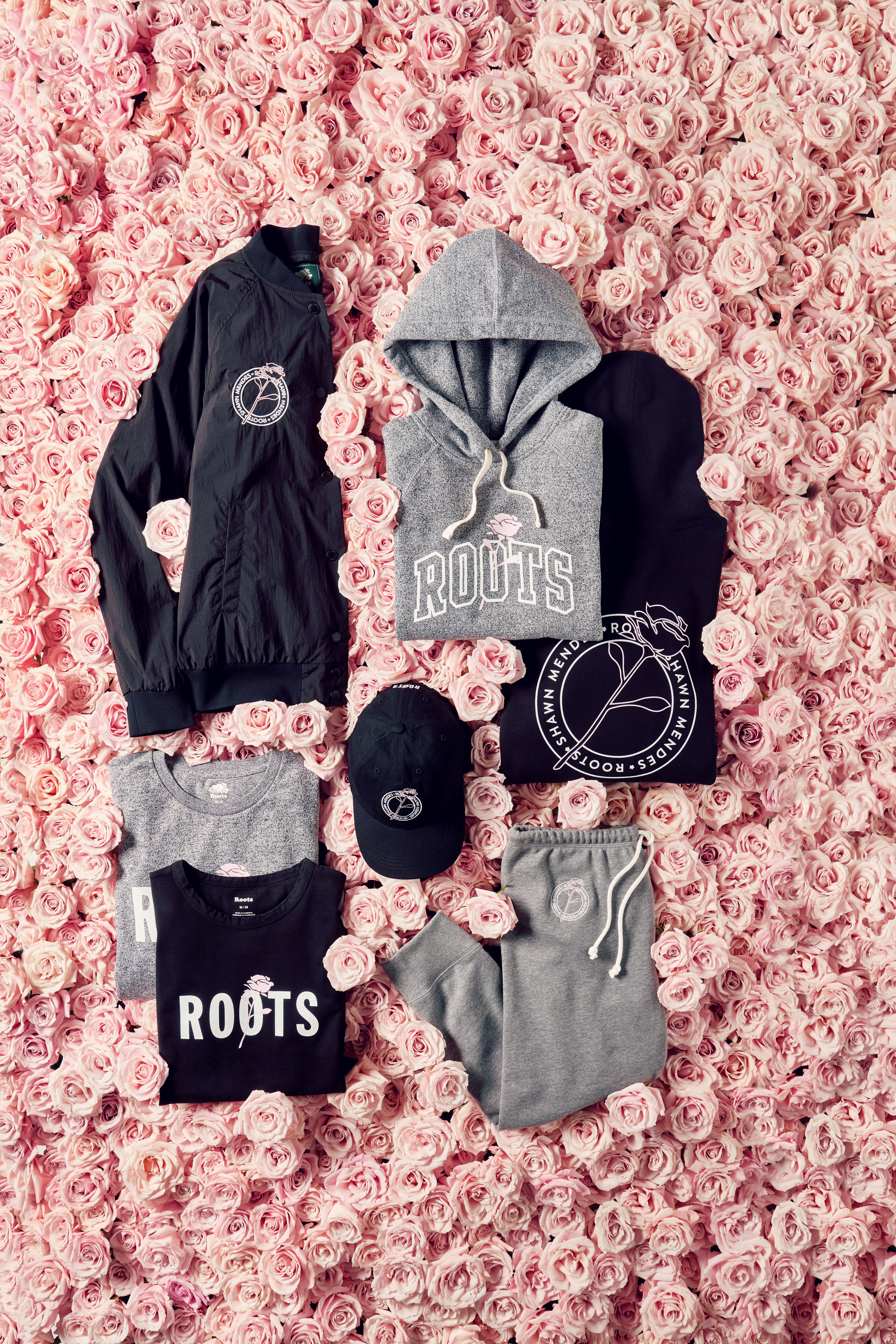 Roots x Shawn Mendes 2019.jpg