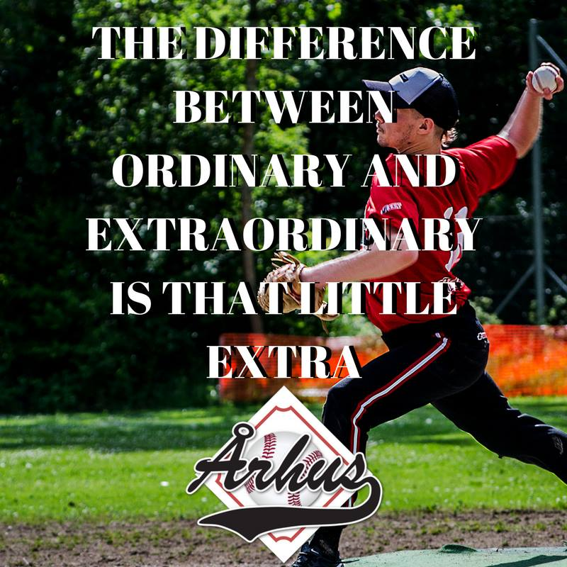 the difference betweenordinary and extraordinary is that little extra