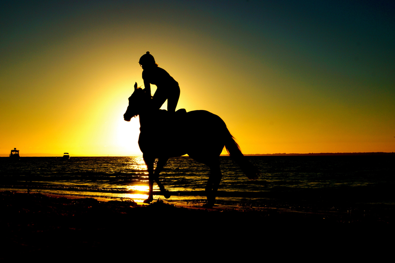 person-riding-horse-into-the-sunset_800.jpg