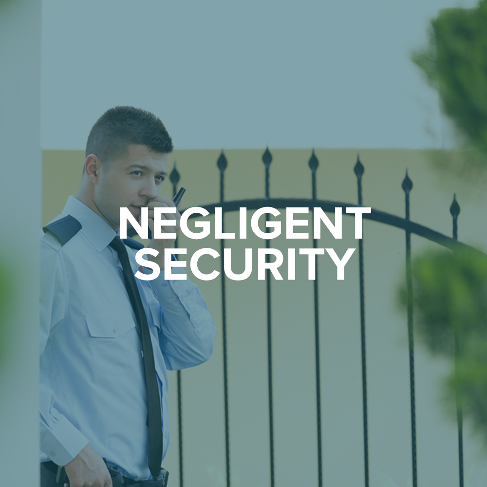 Negligent Security