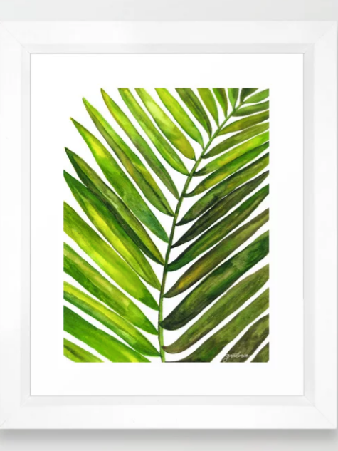 Tropical Collection Part III Framed Art Print