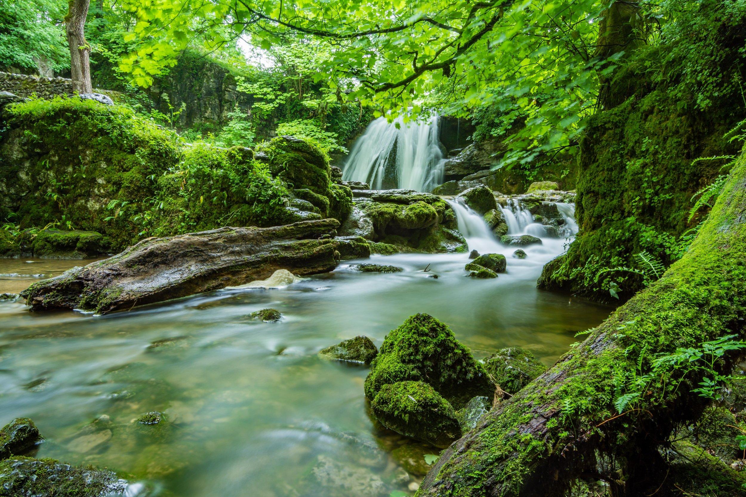 beautiful-cascade-creek-460621 (1).jpg