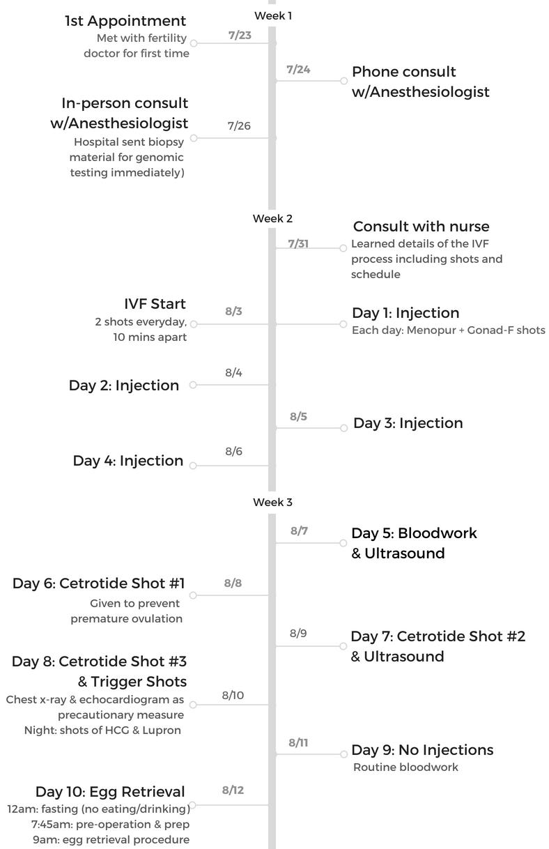 IVF Timeline Joyce.png