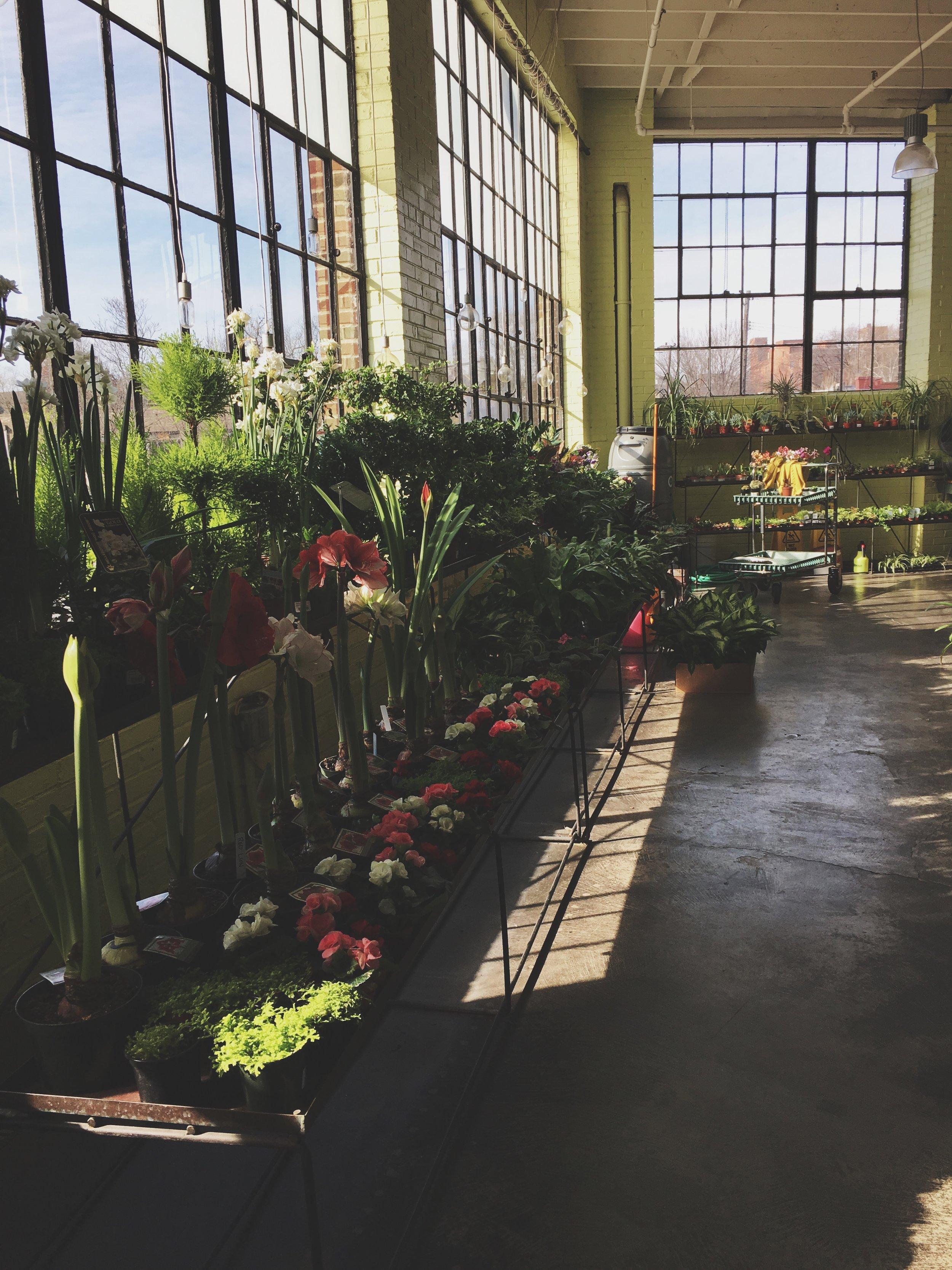Cafe Osage &Bowood Farms|Nursery