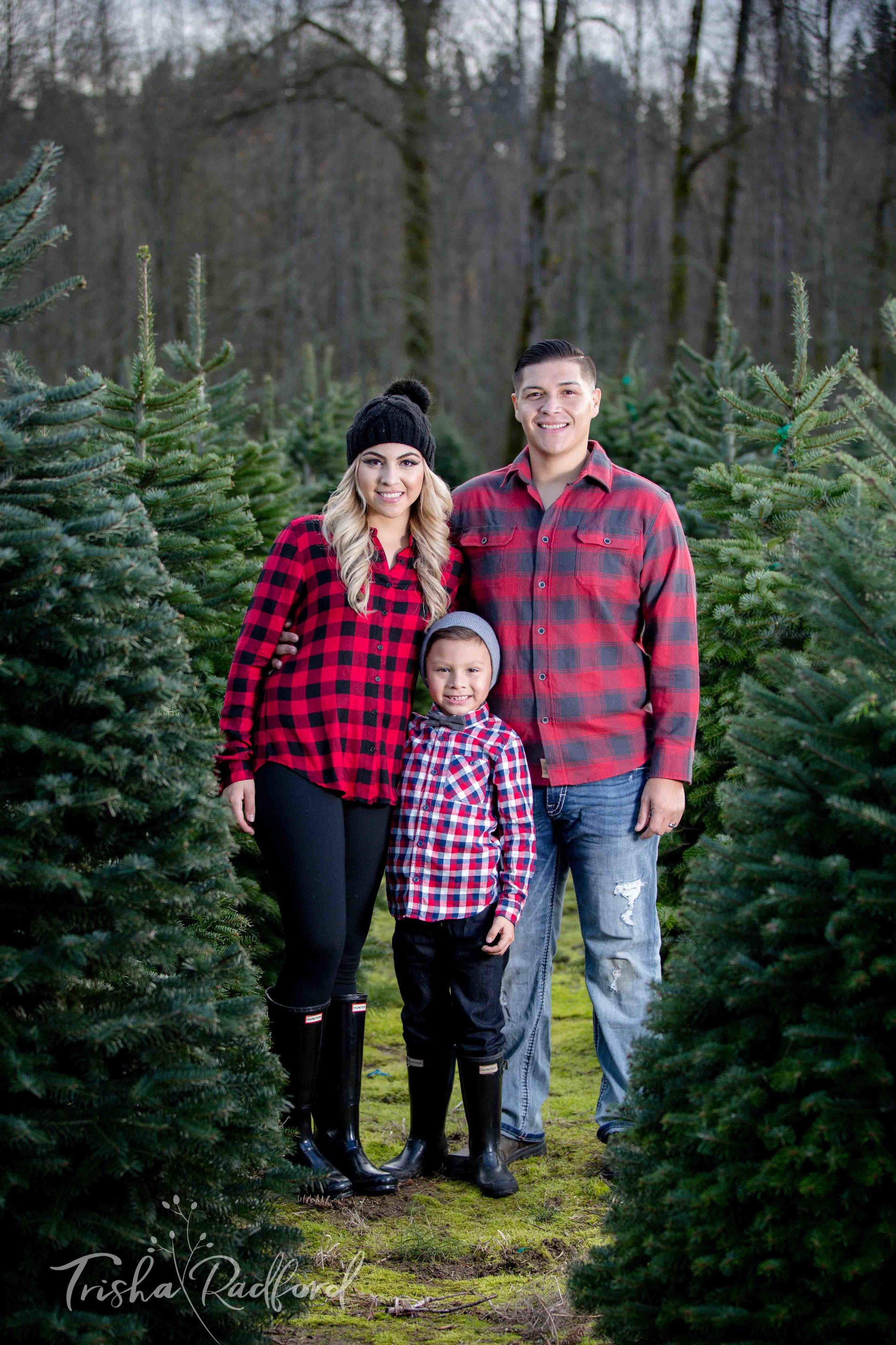 Snohomish County Family Photographer | Christmas Tree Farm Photos