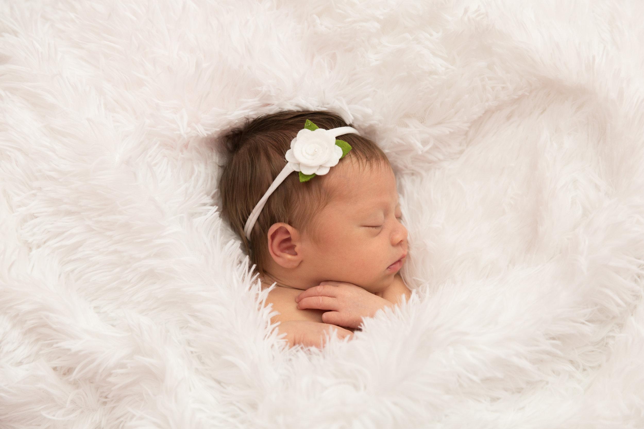 newborn photographer in Lake Stevens, WA