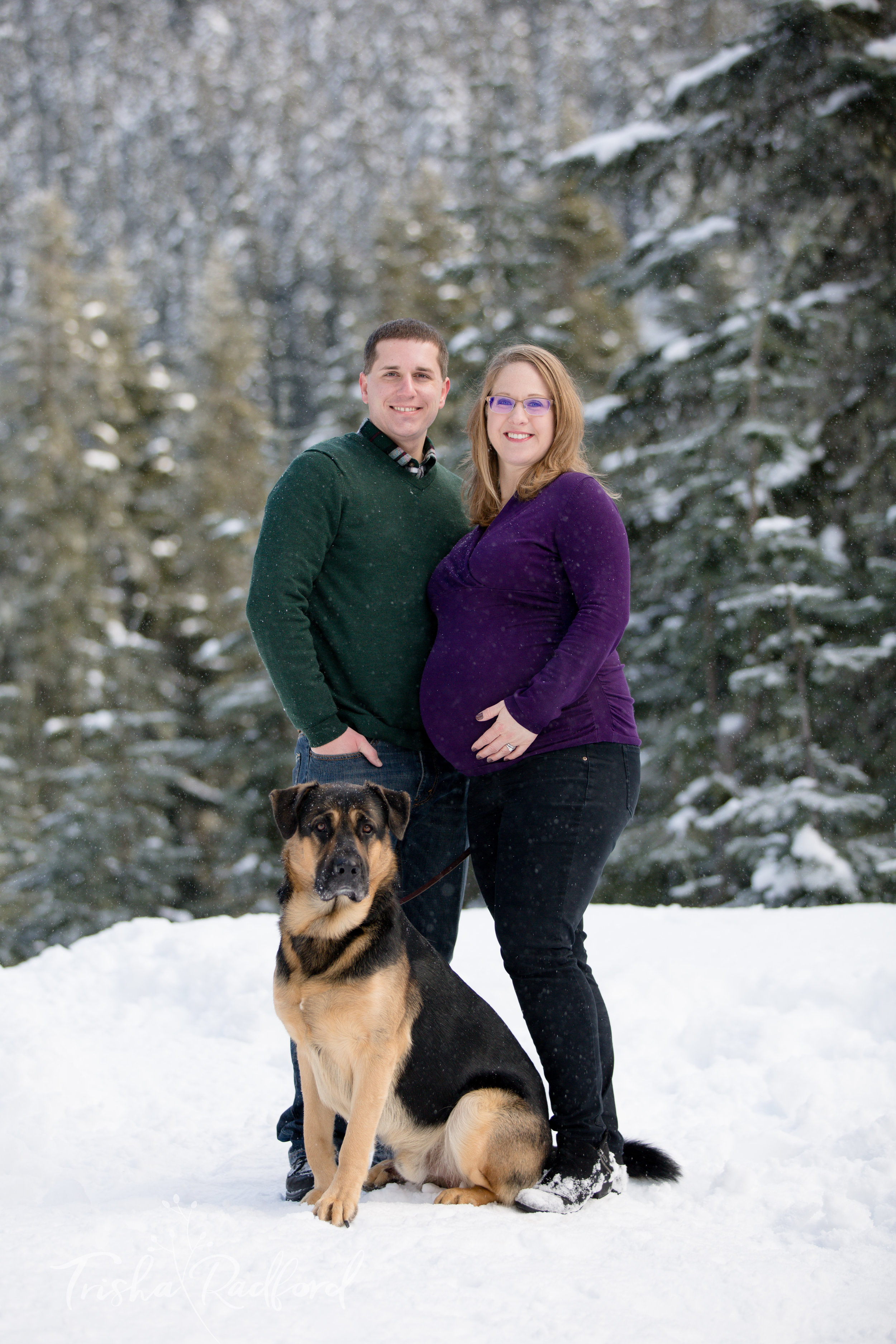 Maternity photoshoot at Stevens Pass.