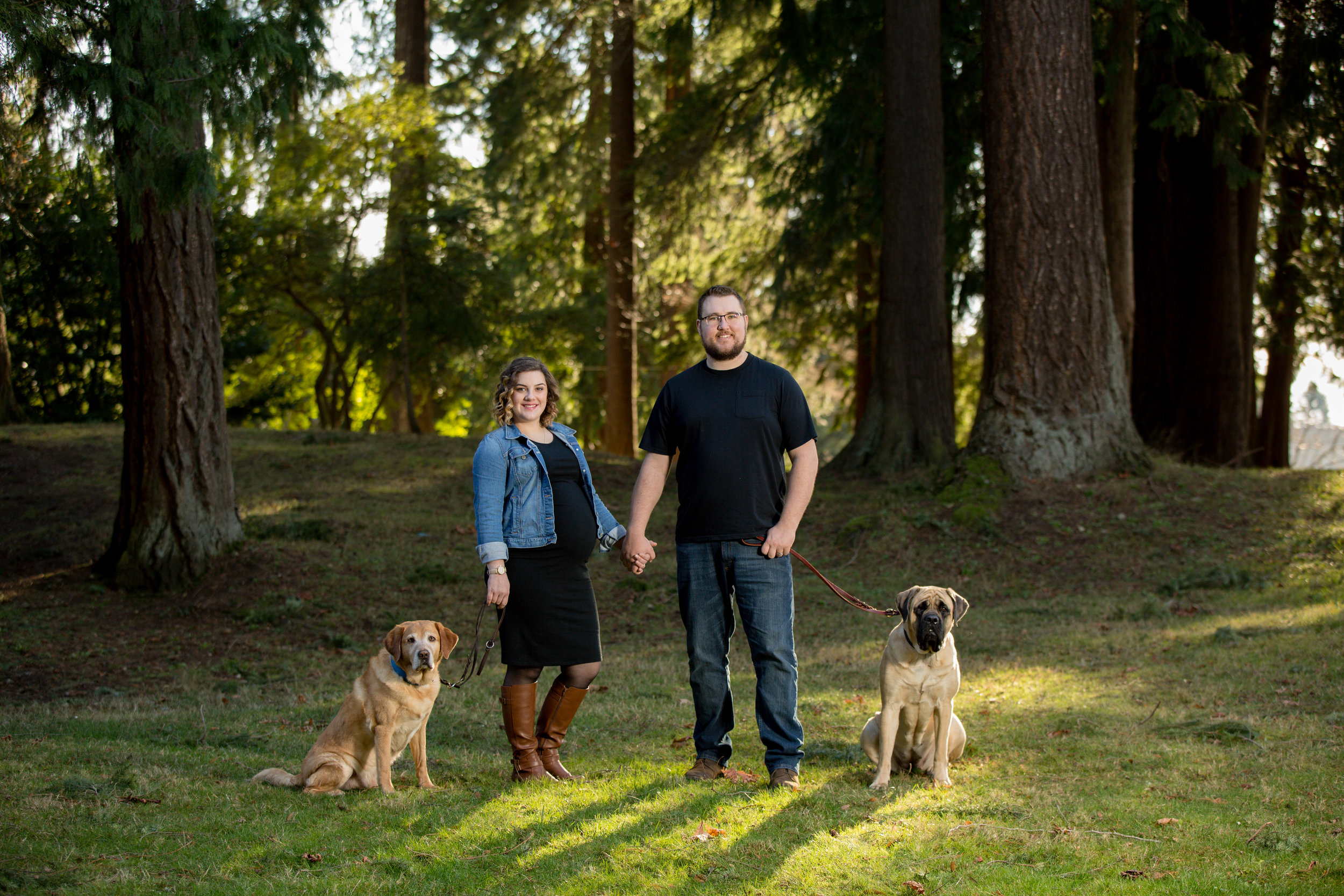 Maternity Photoshoot with two dogs in Snohomish, WA