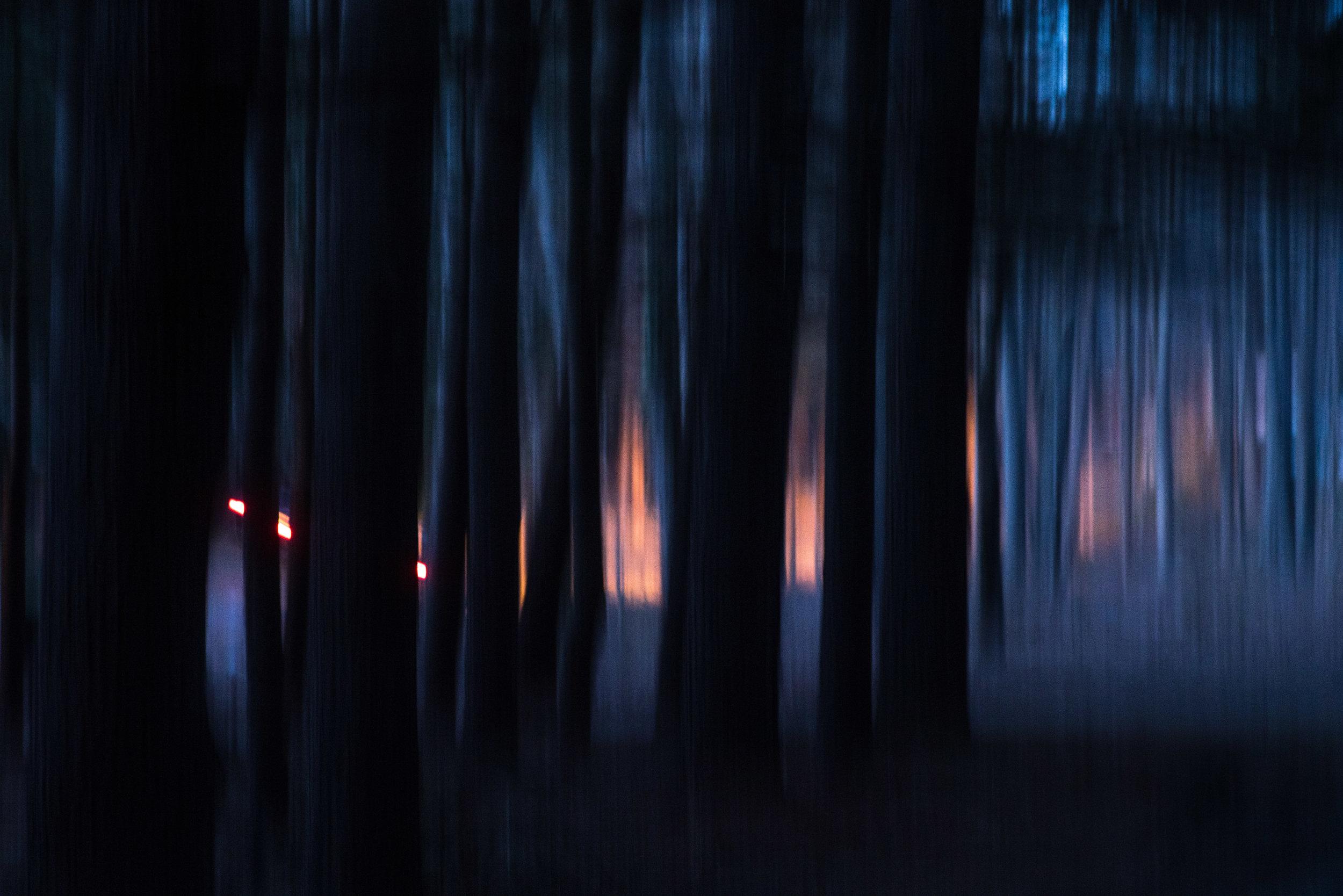 headlights_through_pines.jpg