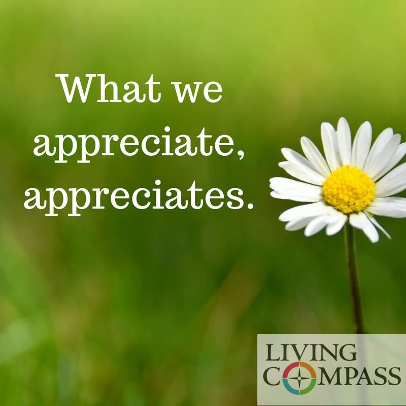 What We Appreciate Appreciates.jpg
