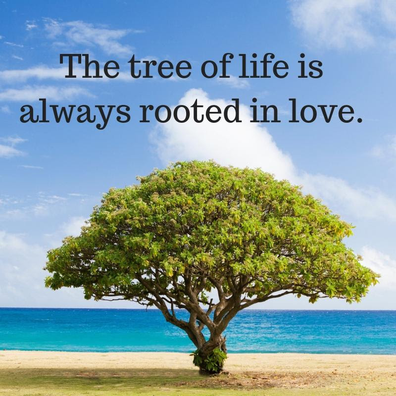 The Tree of Life is Always Rooted in Love