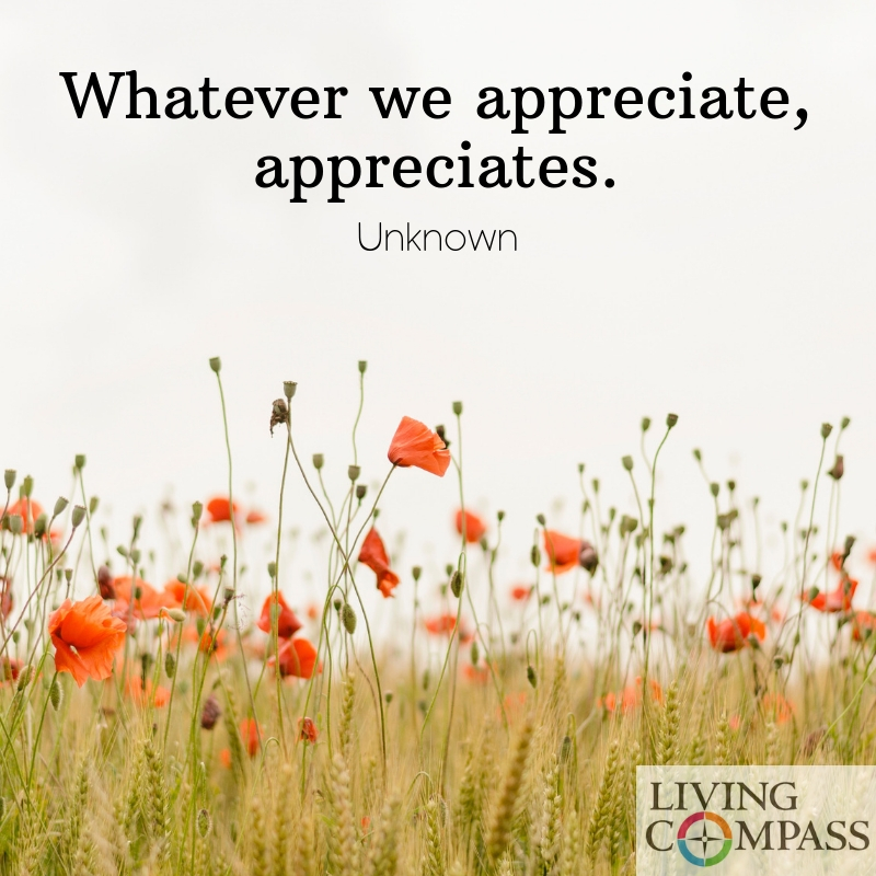 Whatever we appreciate, appreciates.