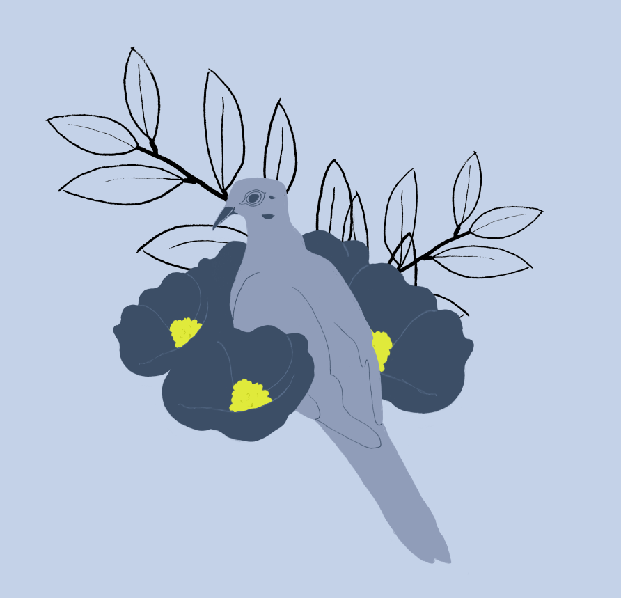 plant day 4.PNG