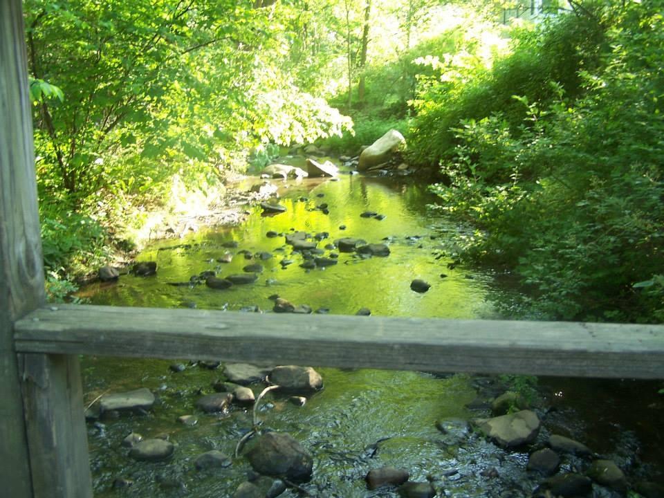 scenery 3.jpg