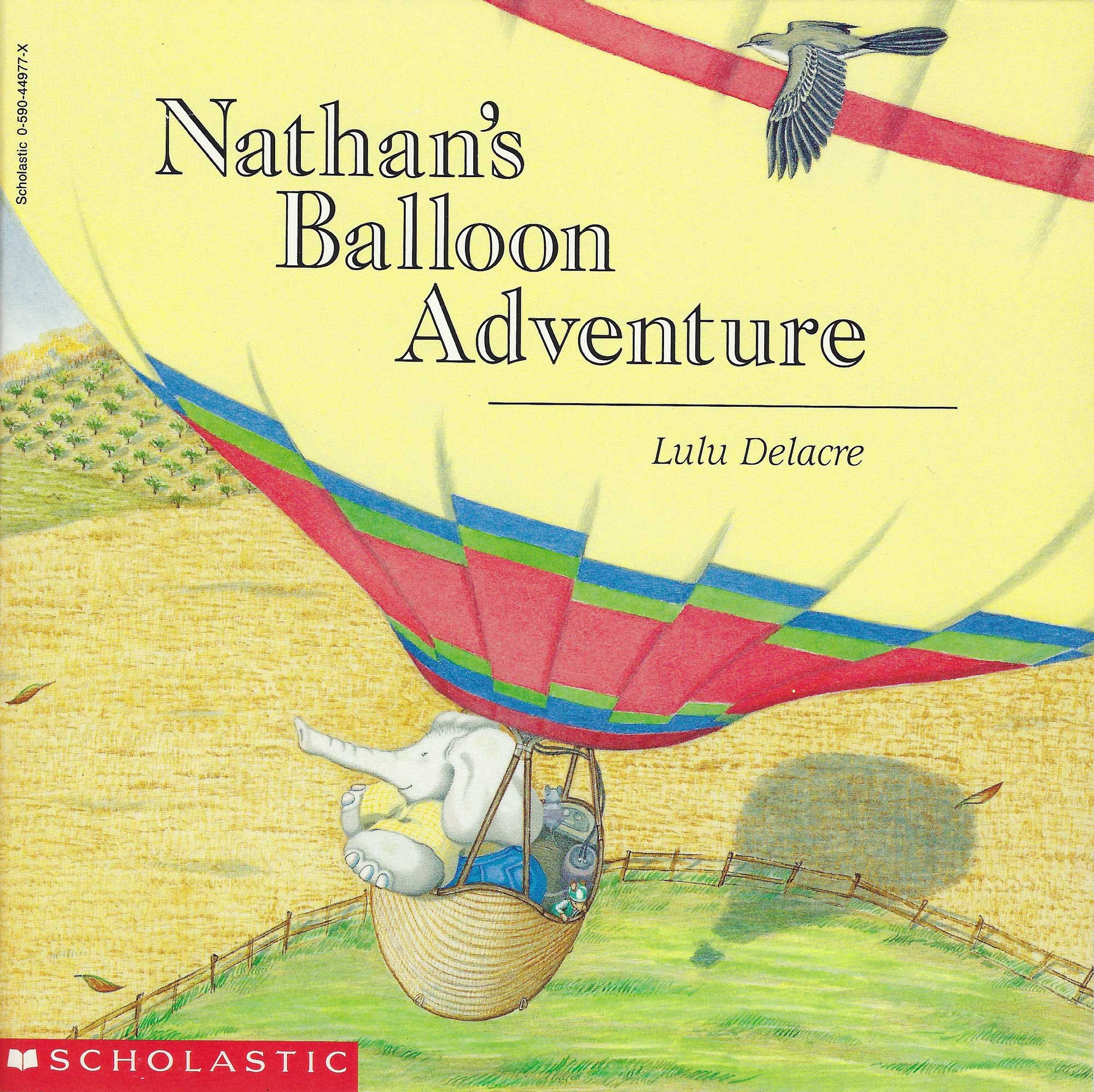 nathan's balloon adventure childrens illustrated book