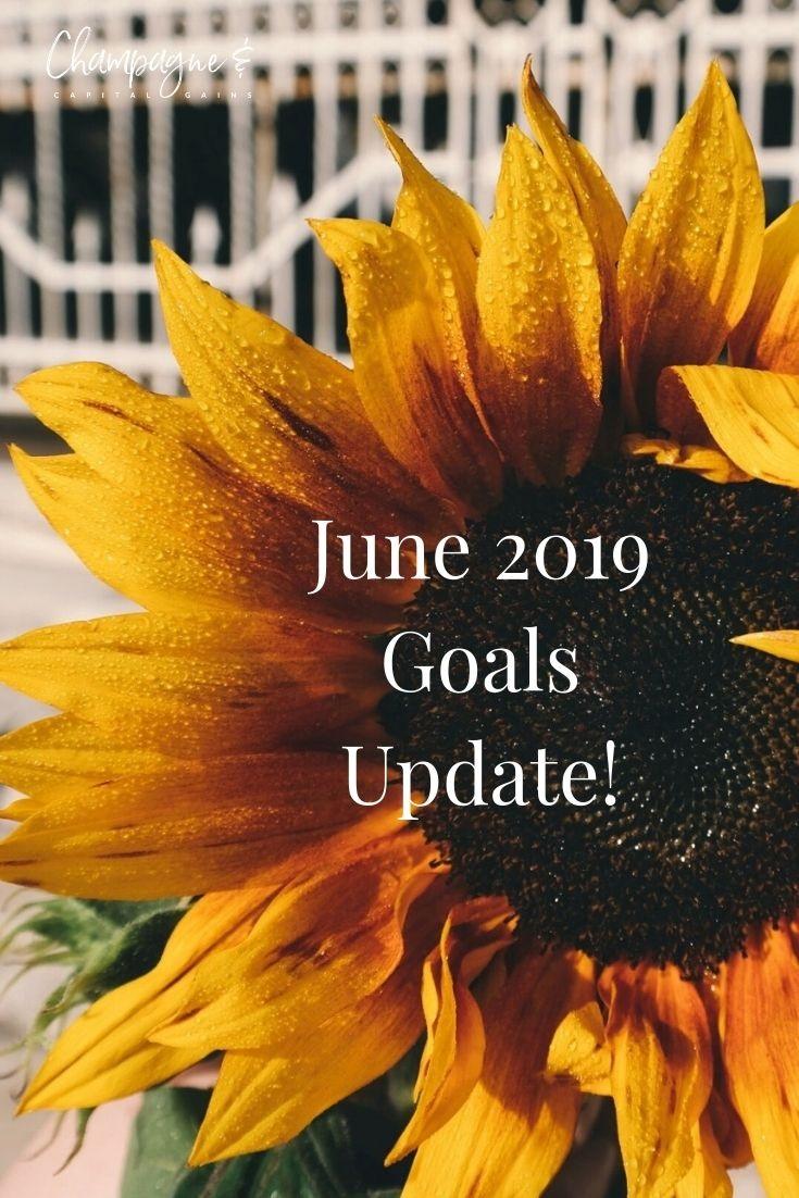june 2019 money and life update