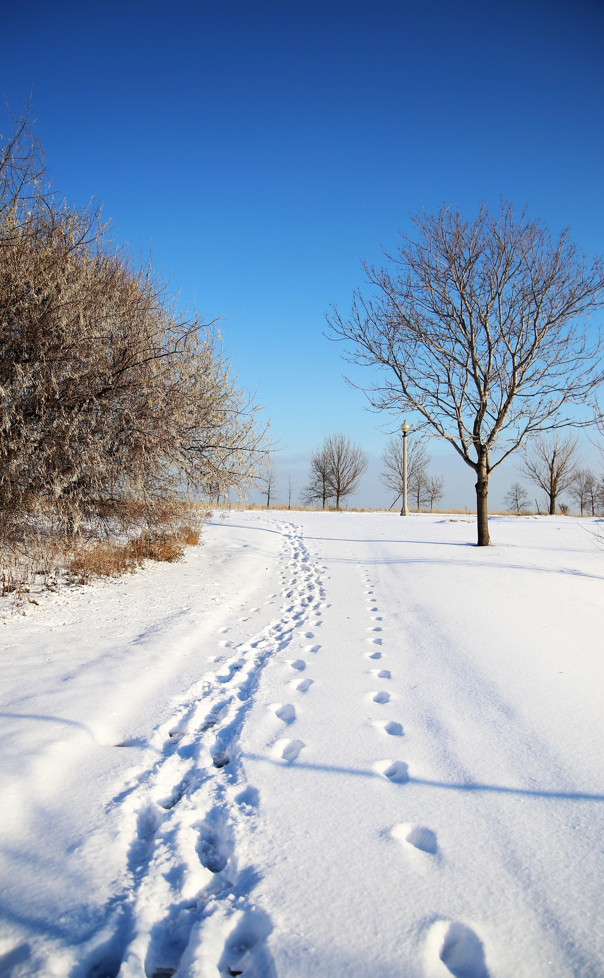 Feze Roofing | Elmhurst Roofing | Chicago Winter