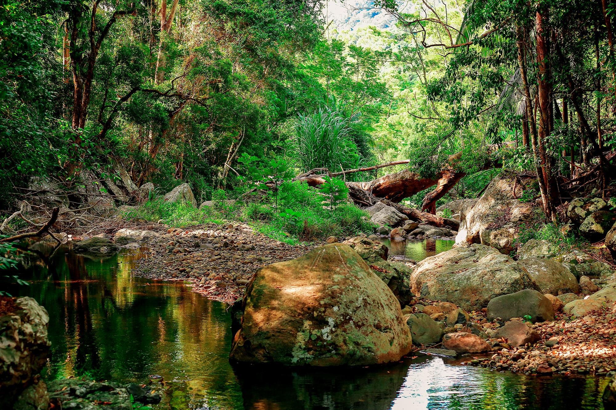 creekimage.jpg