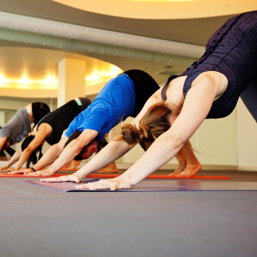 New Hall Programs for 2019!!  - Yoga, Barre and Hoop!  Click for bio's of the instructors and info about the courses they offer!