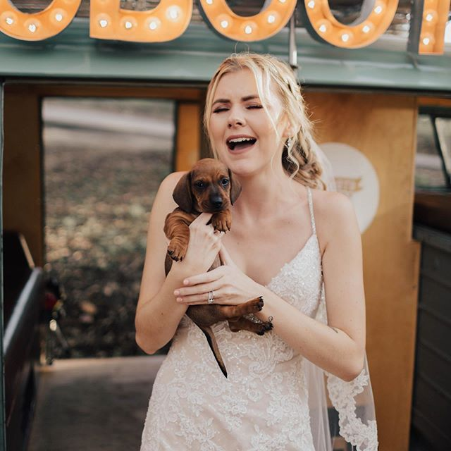 Exactly how I feel knowing that I still have a 3 weddings to edit and about 98% of my house to pack up and move! 🤦🏼‍♀️😭 I seriously am so excited for our new house though! I can't wait to have my horses on our property and have my son grow up the exact way that I have always imagined! 😍 • • • Bride: @nikkilynnsee  Venue: @sacredmountainjulian  Second Shooter: @kamisparksphotoii  Florist: @flora_fauna_design  Dress: @luv_bridal  Make up: @___makemeblush  Hair: @bbshairdos  Coordinator: @familyaffairweddings  Videographer: @eric_swagginson  Photo Booth: @sdphotobus • • • • • #junebugweddings #weddingchicks #theknot #authenticlovemag #greenweddingshoes #stylemepretty #bendelopementphotographer #oregonelopementphotographer #washingtonelopementphotographer #bigsurelopementphotographer #yosemiteelopement #yosemiteelopementphotographer #bigsurelopement #oregonelopement #sandiegowedding #sandiegoweddingphotographer #temeculawedding #temeculaweddingphotographer #ocwedding #ocweddingphotographer #wyomingwedding #wyomingelopement #wyomingweddingphotographer #montanawedding #justalittleloveinspo #weddinglegends #weddingforward #wdofficial