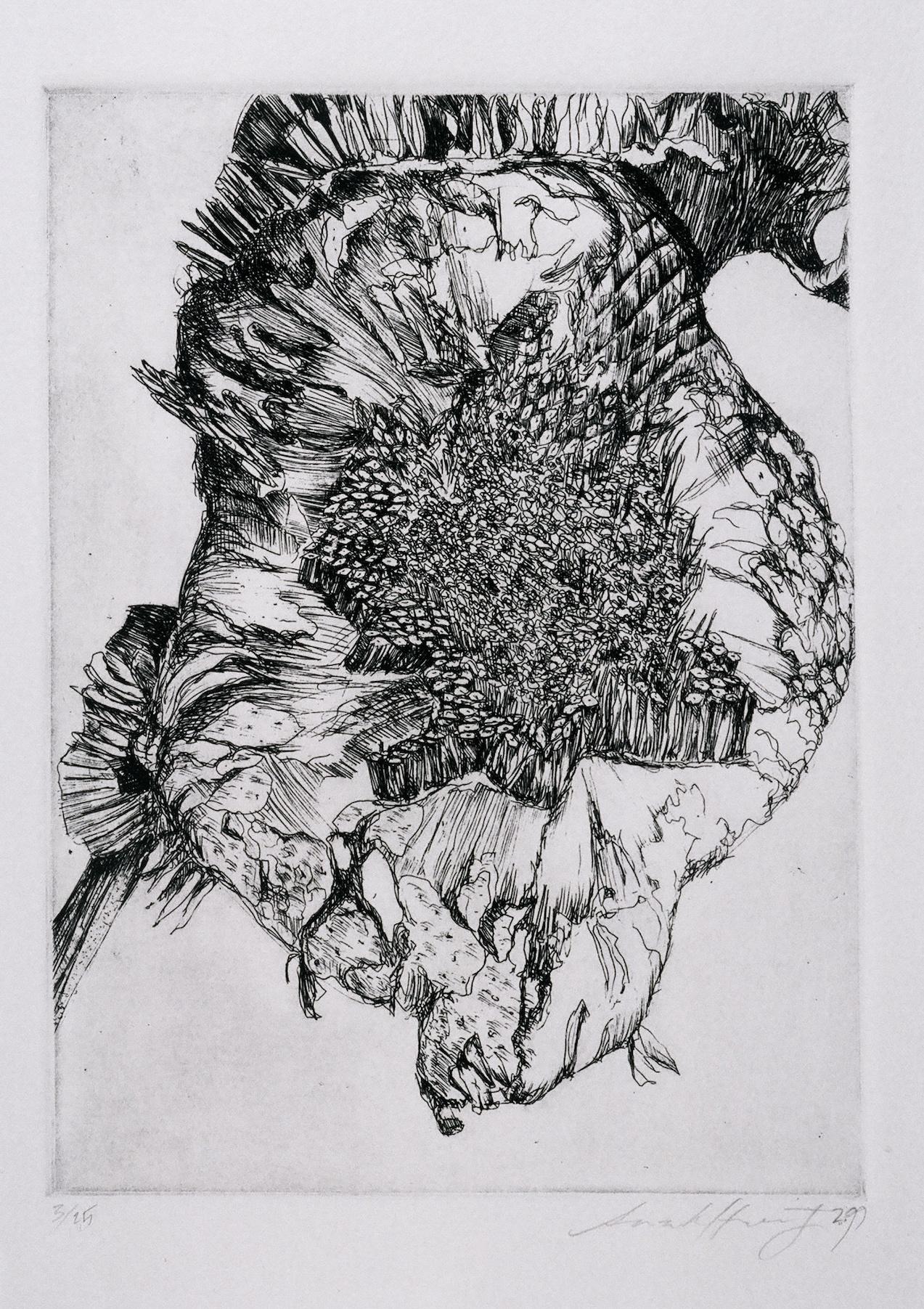 hampshire-sunflower3.jpeg
